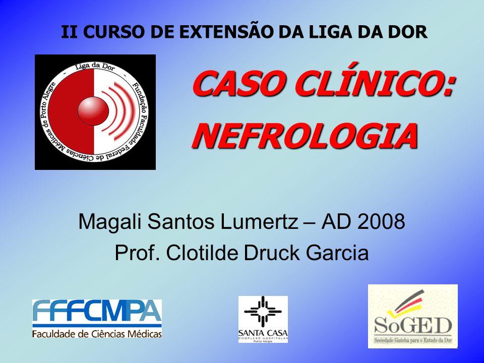 Magali Santos Lumertz – AD 2008 Prof. Clotilde Druck Garcia