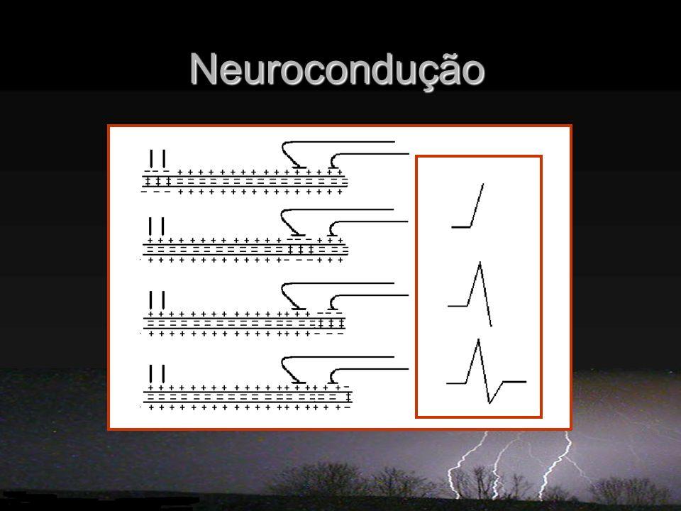 Neurocondução