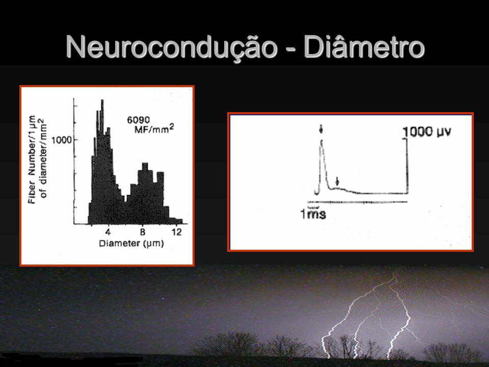 Neurocondução - Diâmetro