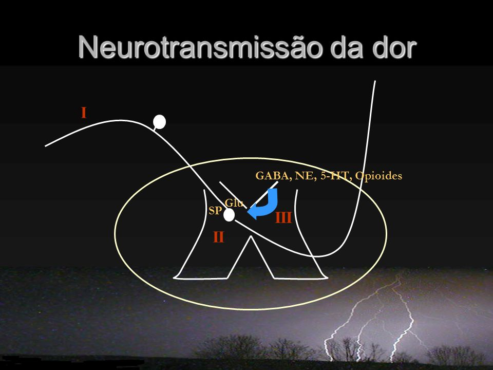 Neurotransmissão da dor