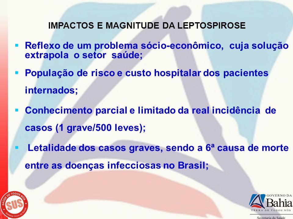 IMPACTOS E MAGNITUDE DA LEPTOSPIROSE