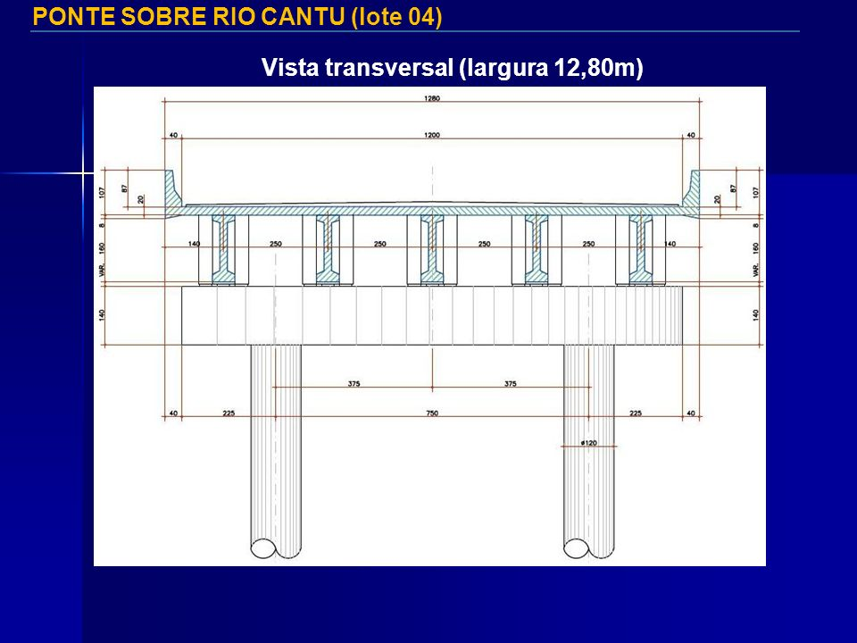 PONTE SOBRE RIO CANTU (lote 04)