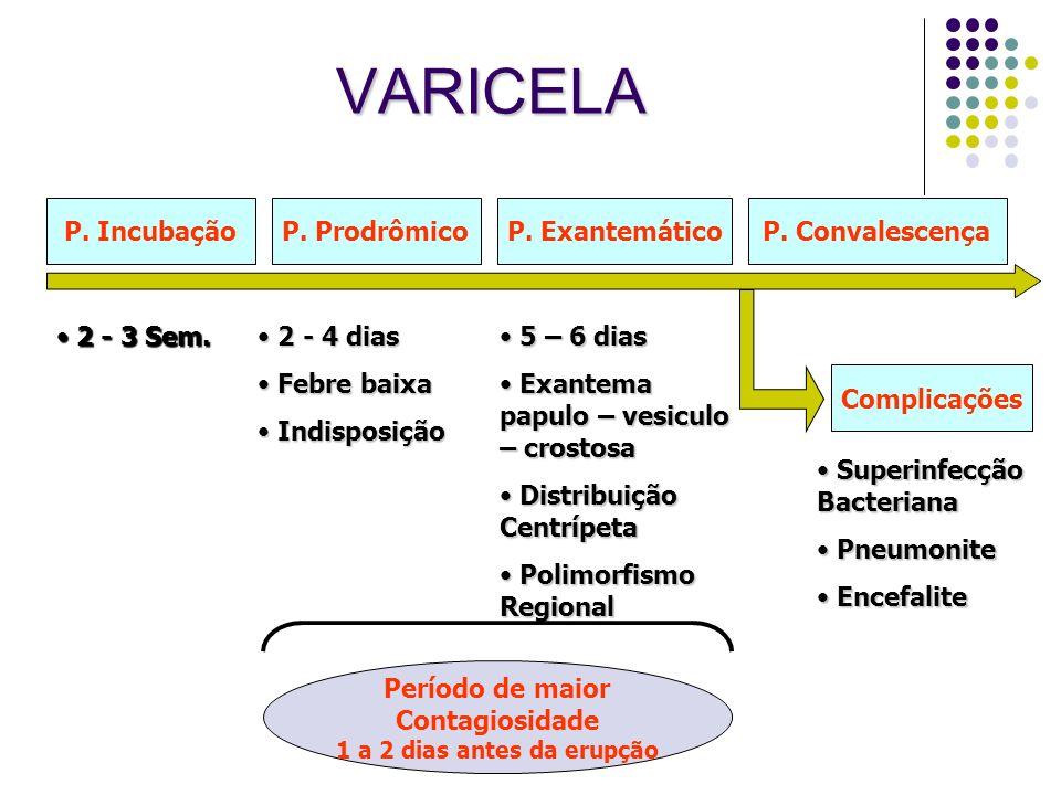 VARICELA P. Incubação P. Prodrômico P. Exantemático P. Convalescença