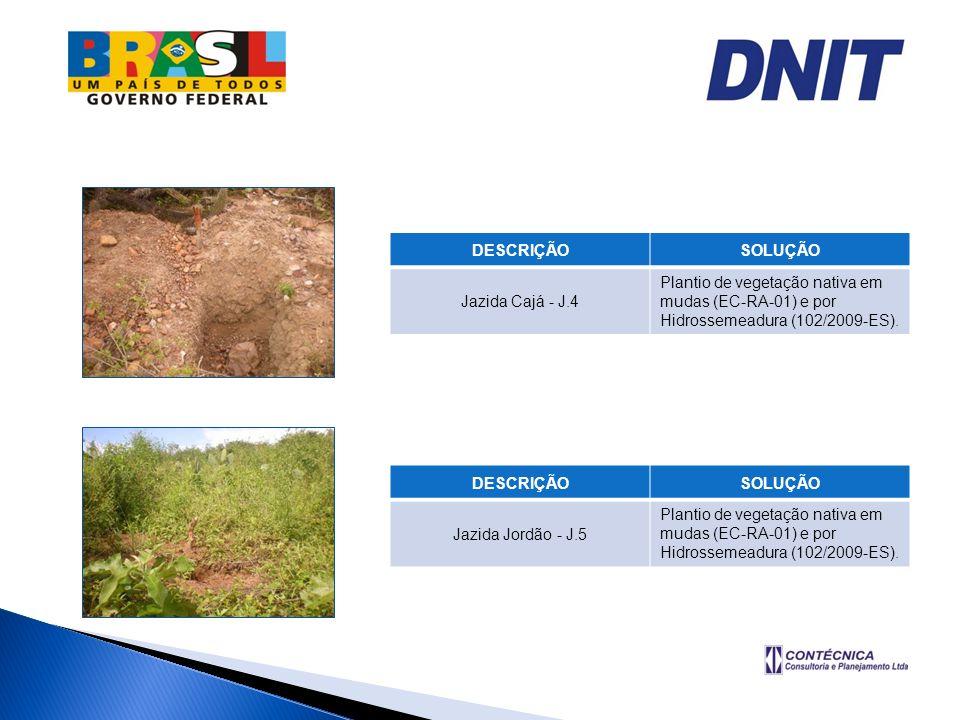 DESCRIÇÃOSOLUÇÃO. Jazida Cajá - J.4. Plantio de vegetação nativa em mudas (EC-RA-01) e por Hidrossemeadura (102/2009-ES).