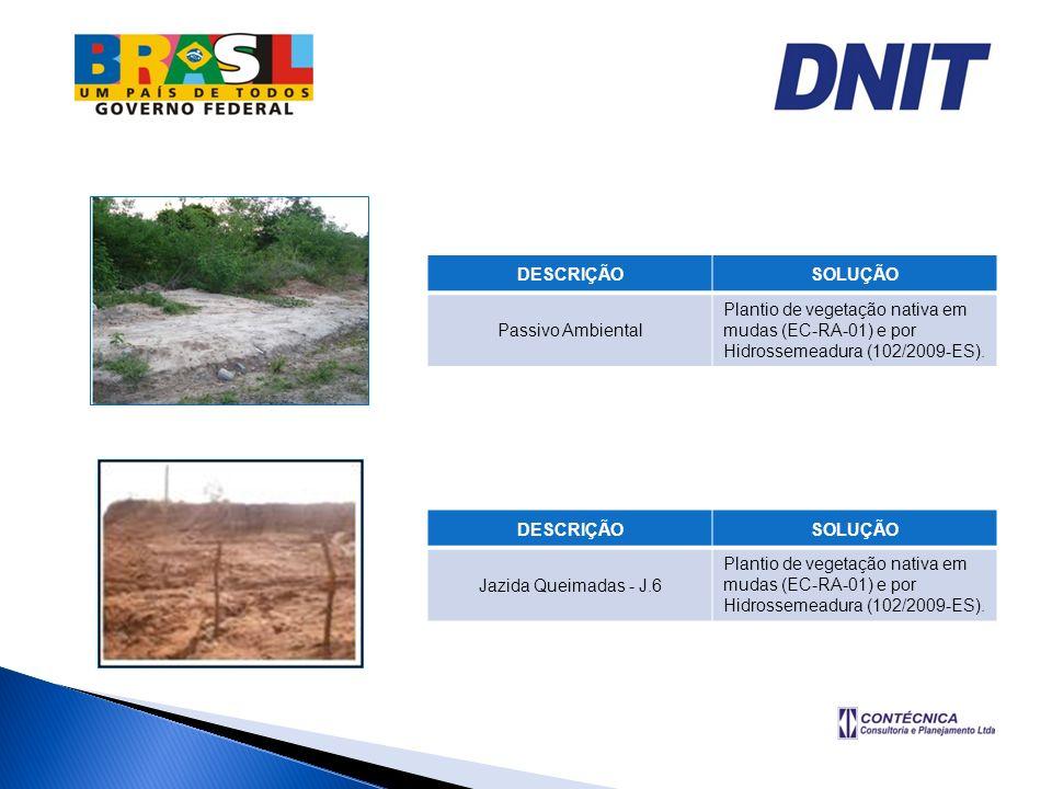DESCRIÇÃOSOLUÇÃO. Passivo Ambiental. Plantio de vegetação nativa em mudas (EC-RA-01) e por Hidrossemeadura (102/2009-ES).