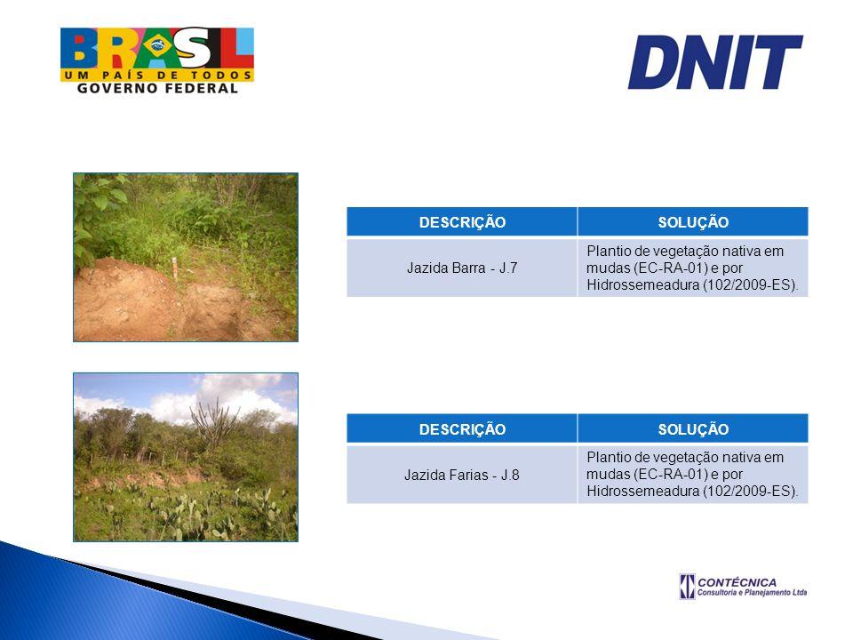 DESCRIÇÃOSOLUÇÃO. Jazida Barra - J.7. Plantio de vegetação nativa em mudas (EC-RA-01) e por Hidrossemeadura (102/2009-ES).