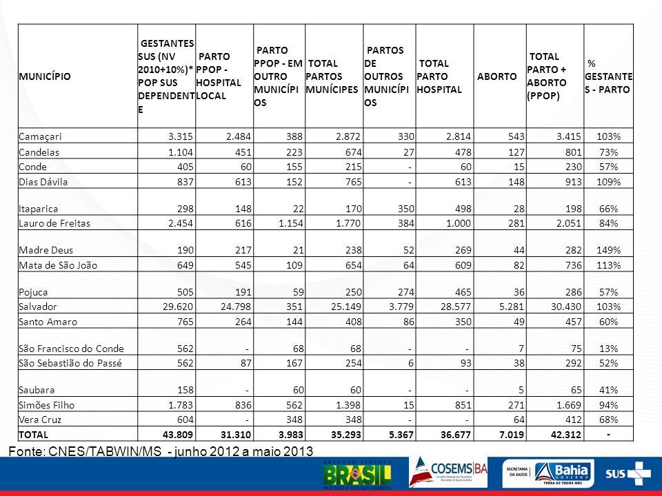 Fonte: CNES/TABWIN/MS - junho 2012 a maio 2013