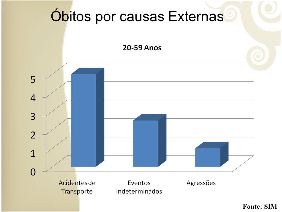 Óbitos por causas Externas