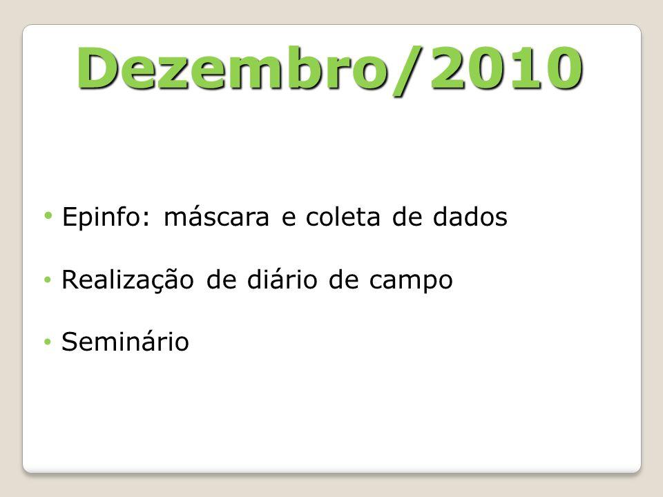Dezembro/2010 Epinfo: máscara e coleta de dados