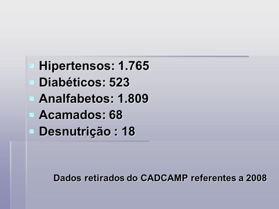 Hipertensos: 1.765 Diabéticos: 523 Analfabetos: 1.809 Acamados: 68