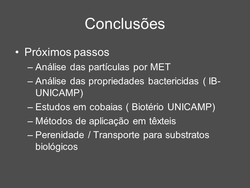 Conclusões Próximos passos Análise das partículas por MET