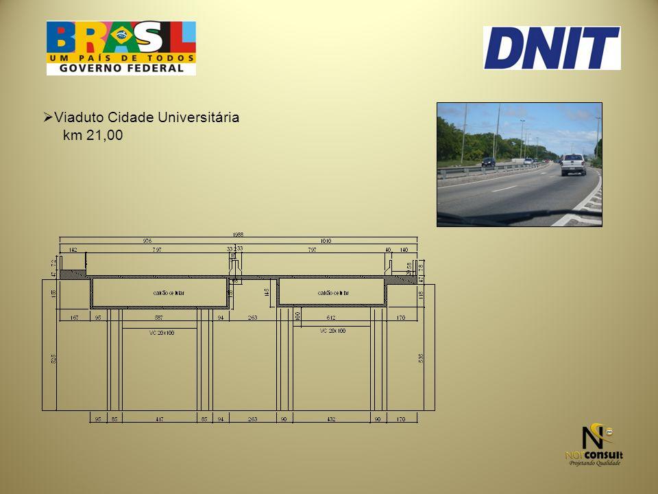Viaduto Cidade Universitária