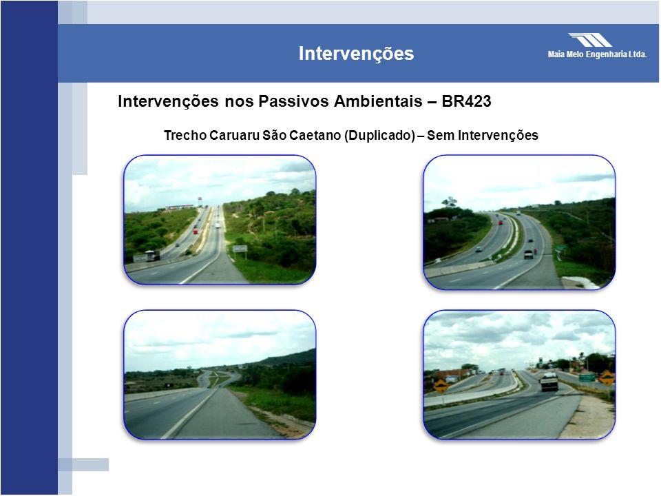 Intervenções Intervenções nos Passivos Ambientais – BR423