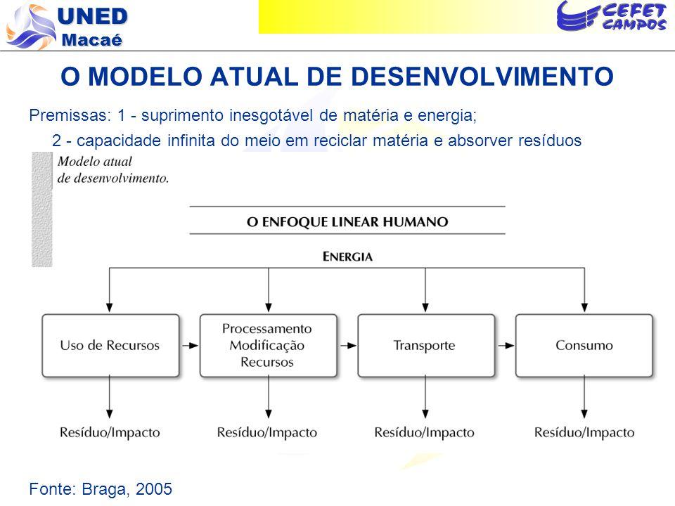 O MODELO ATUAL DE DESENVOLVIMENTO