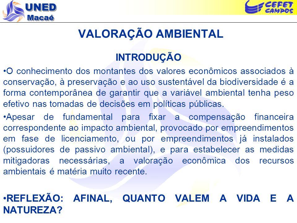 VALORAÇÃO AMBIENTAL INTRODUÇÃO