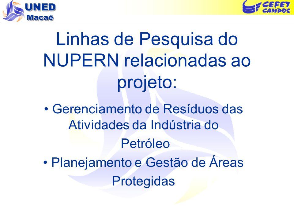 Linhas de Pesquisa do NUPERN relacionadas ao projeto: