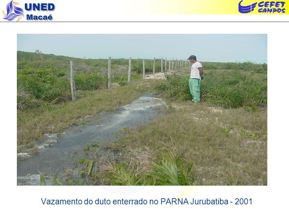Vazamento do duto enterrado no PARNA Jurubatiba - 2001