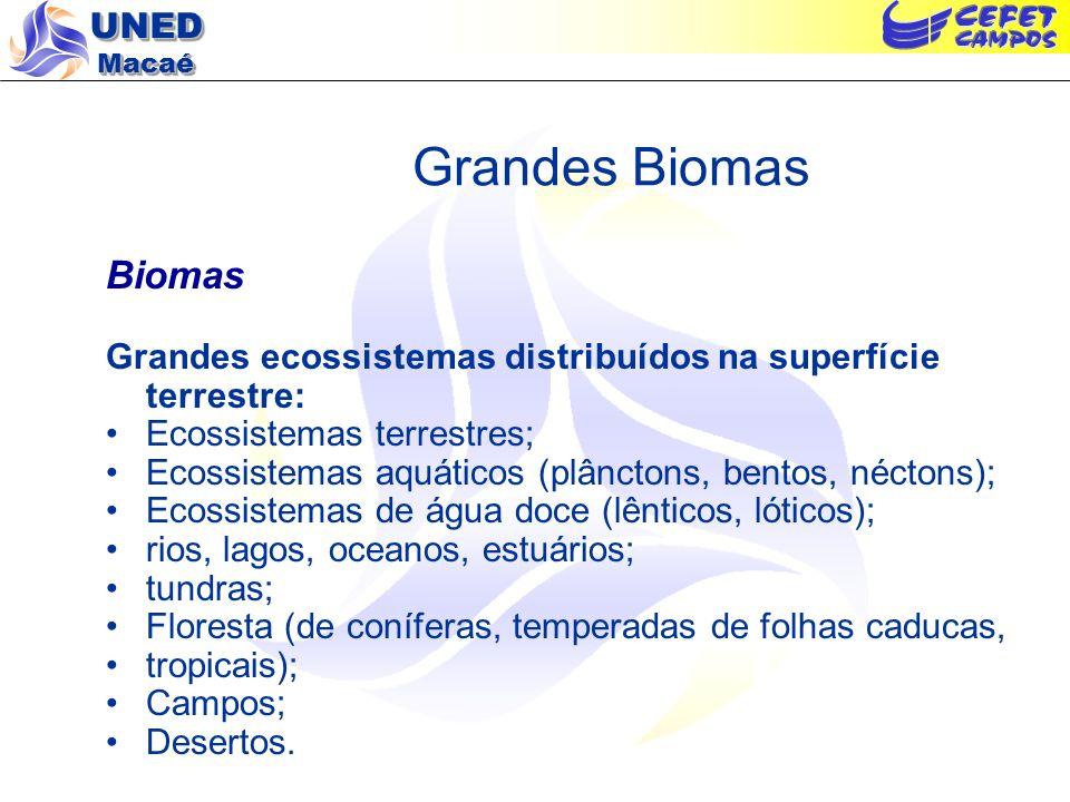 Grandes Biomas Biomas. Grandes ecossistemas distribuídos na superfície terrestre: Ecossistemas terrestres;