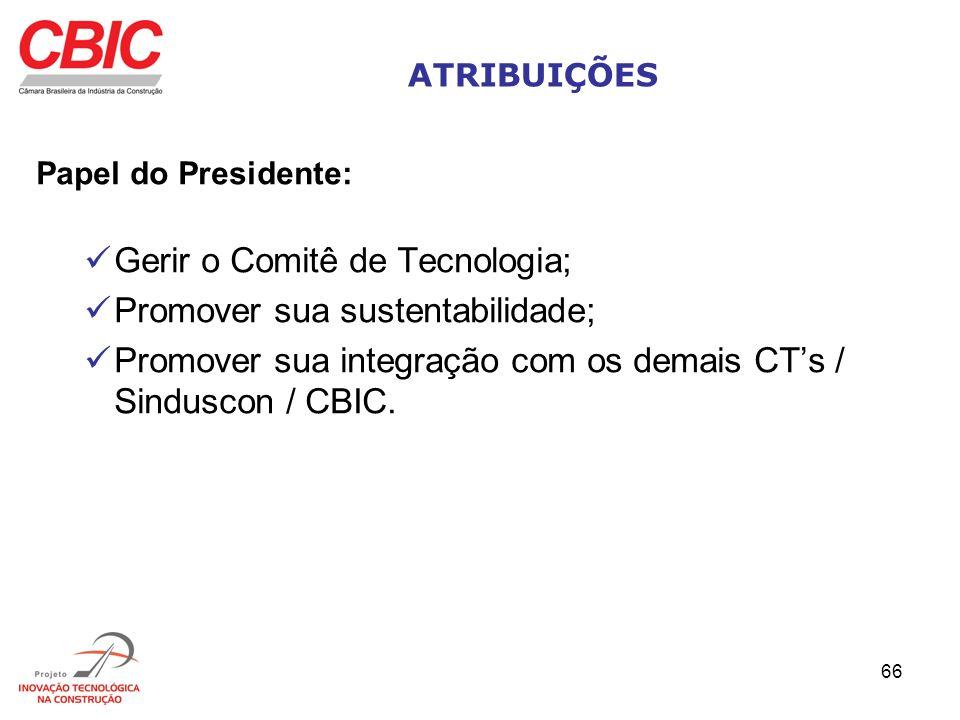 Gerir o Comitê de Tecnologia; Promover sua sustentabilidade;