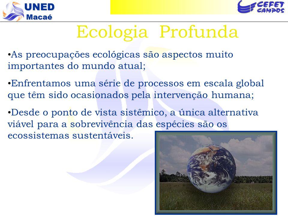 Ecologia Profunda As preocupações ecológicas são aspectos muito importantes do mundo atual;