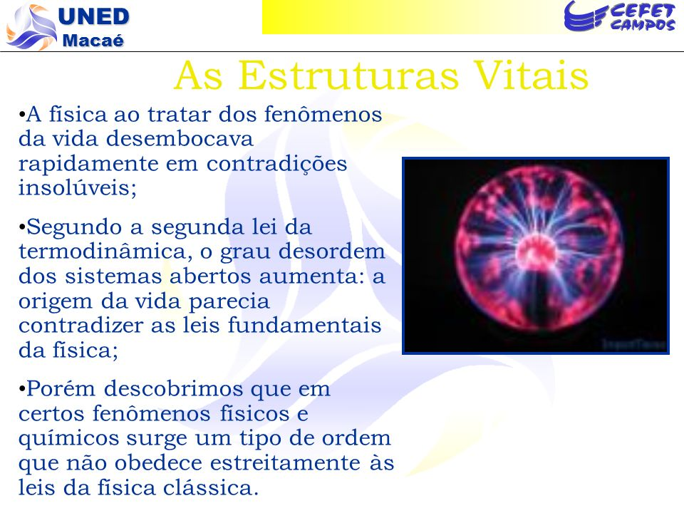 As Estruturas VitaisA física ao tratar dos fenômenos da vida desembocava rapidamente em contradições insolúveis;