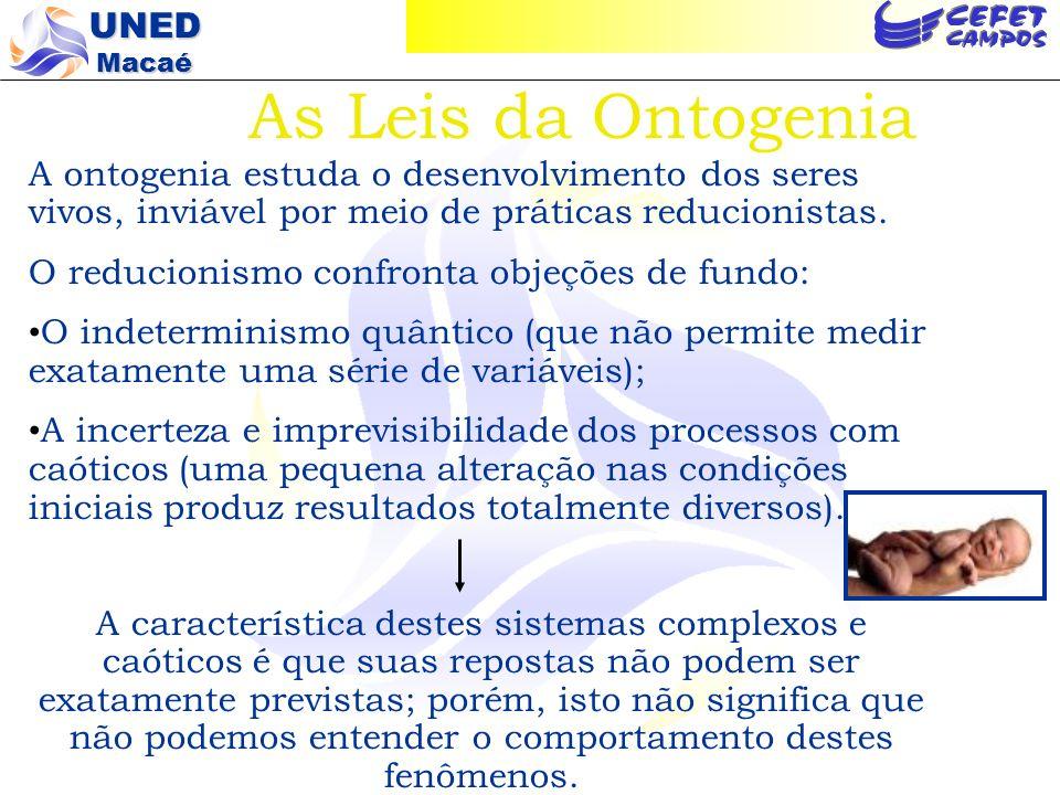 As Leis da Ontogenia A ontogenia estuda o desenvolvimento dos seres vivos, inviável por meio de práticas reducionistas.