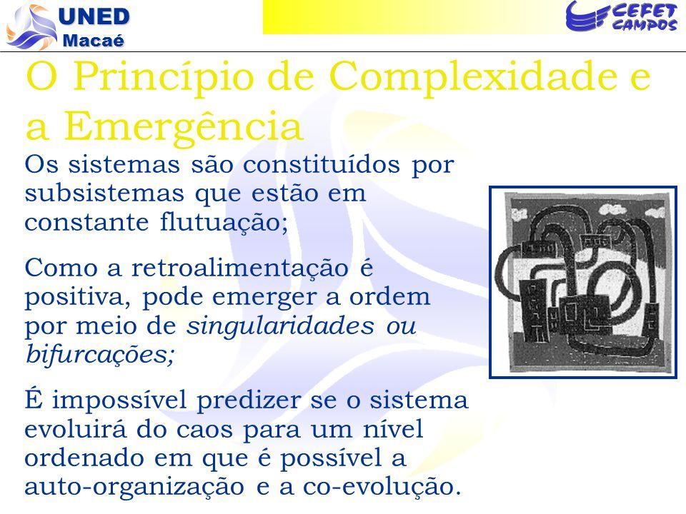 O Princípio de Complexidade e a Emergência