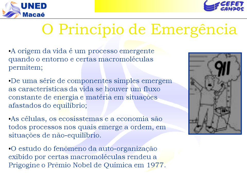 O Princípio de Emergência