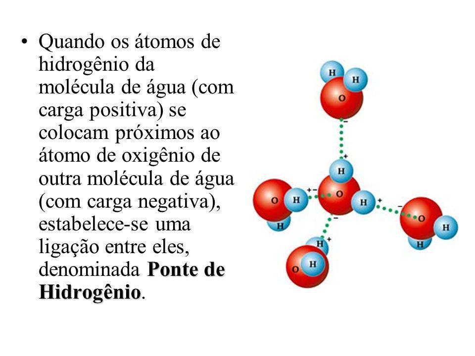 Quando os átomos de hidrogênio da molécula de água (com carga positiva) se colocam próximos ao átomo de oxigênio de outra molécula de água (com carga negativa), estabelece-se uma ligação entre eles, denominada Ponte de Hidrogênio.