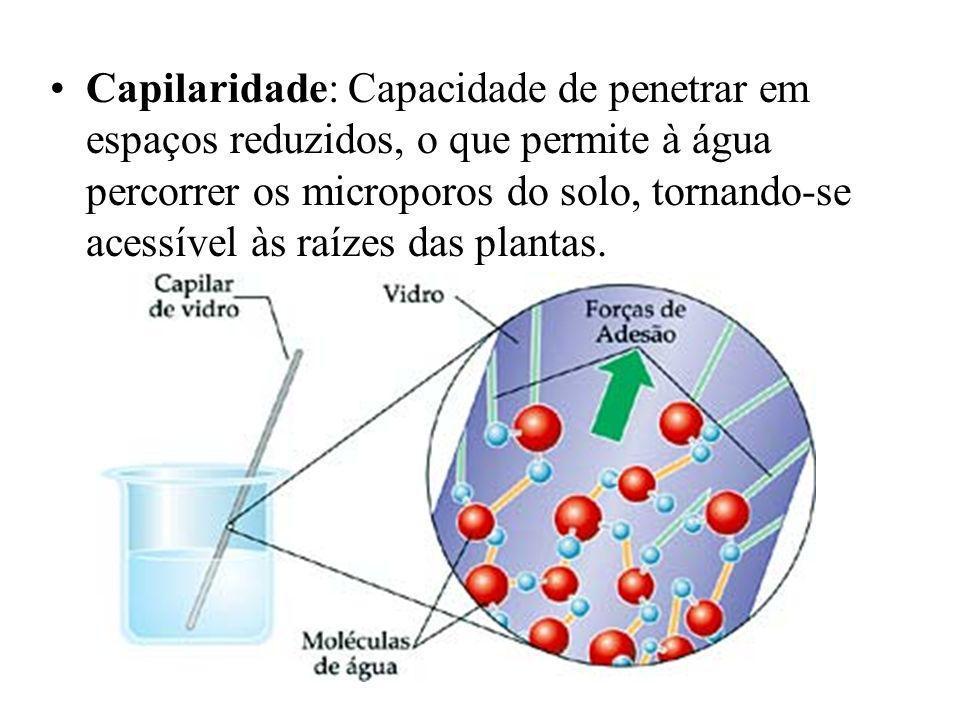Capilaridade: Capacidade de penetrar em espaços reduzidos, o que permite à água percorrer os microporos do solo, tornando-se acessível às raízes das plantas.