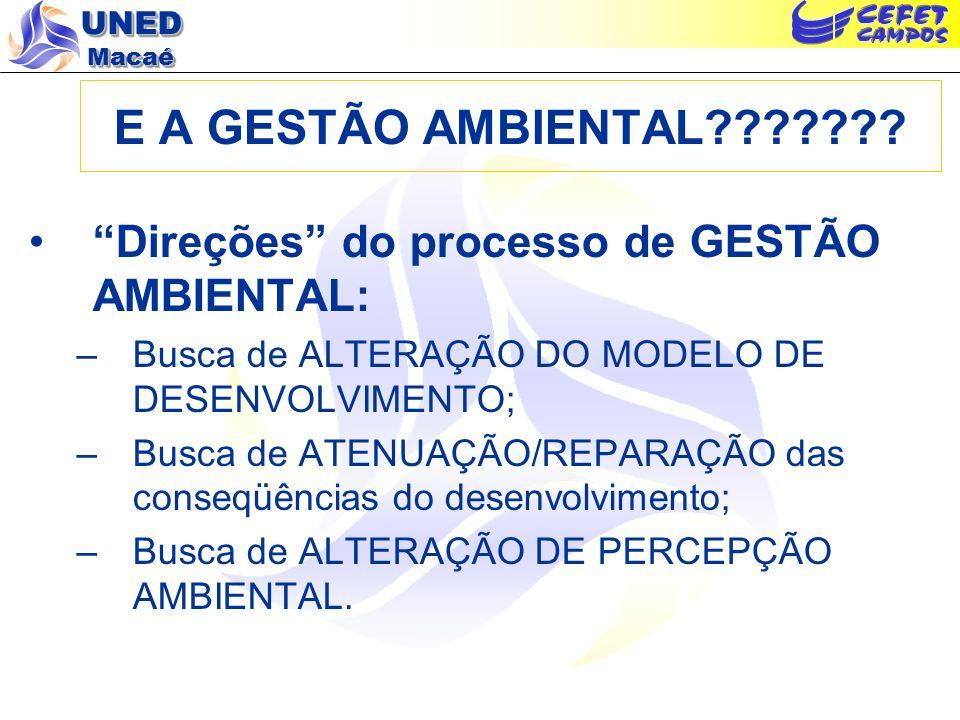 E A GESTÃO AMBIENTAL Direções do processo de GESTÃO AMBIENTAL: Busca de ALTERAÇÃO DO MODELO DE DESENVOLVIMENTO;