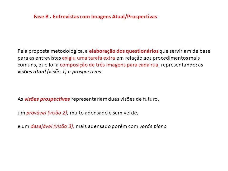 Fase B . Entrevistas com Imagens Atual/Prospectivas