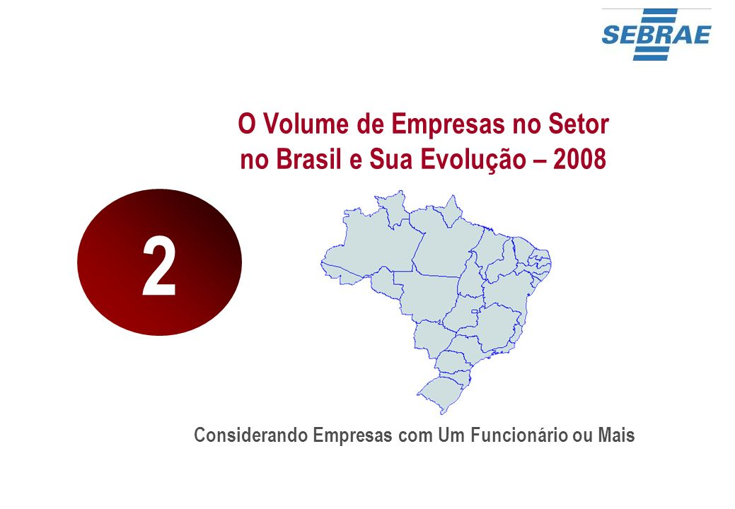 O Volume de Empresas no Setor no Brasil e Sua Evolução – 2008