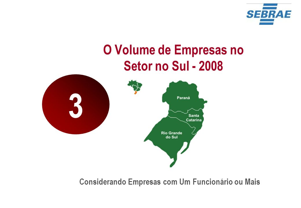 O Volume de Empresas no Setor no Sul - 2008