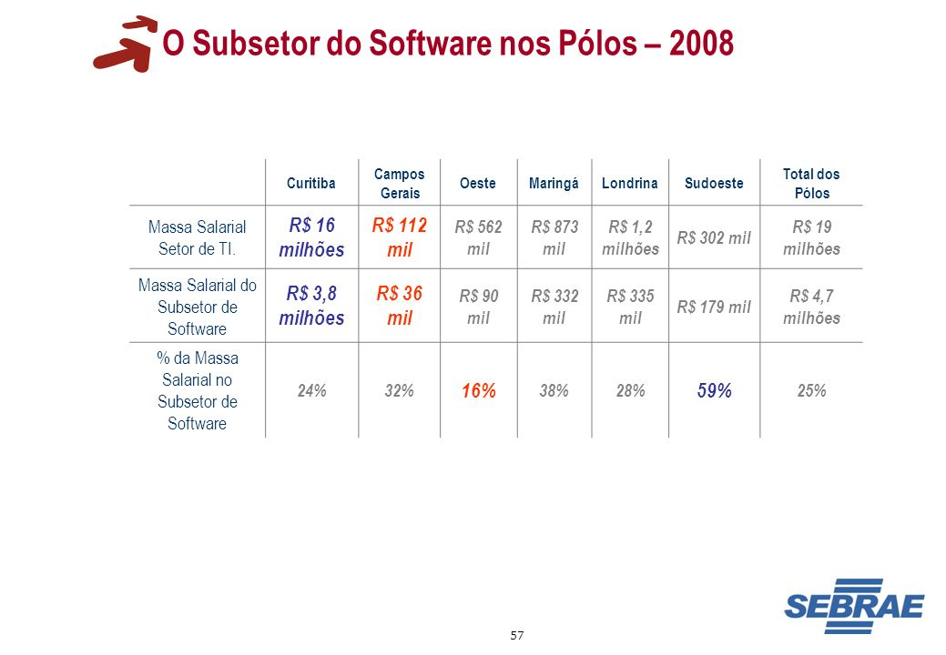 O Subsetor do Software nos Pólos – 2008