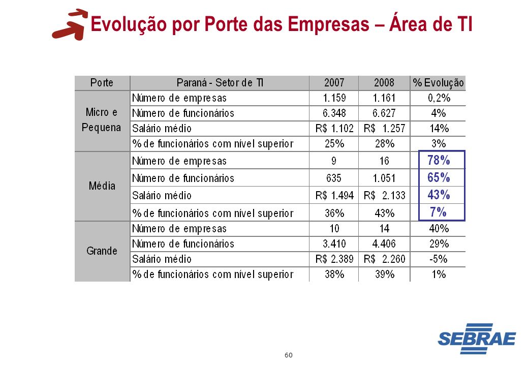 Evolução por Porte das Empresas – Área de TI