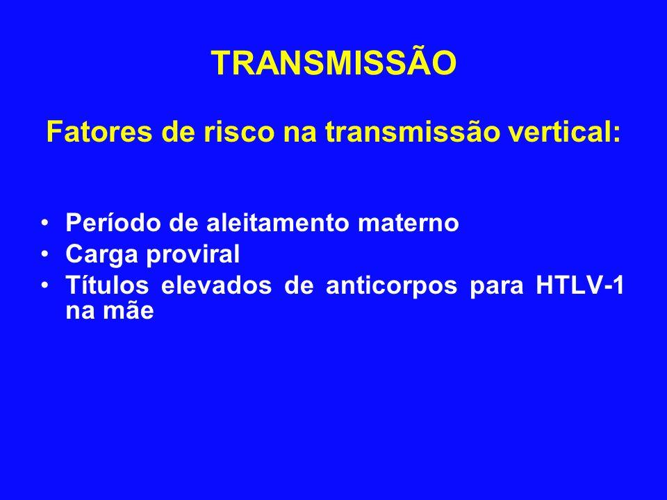 Fatores de risco na transmissão vertical:
