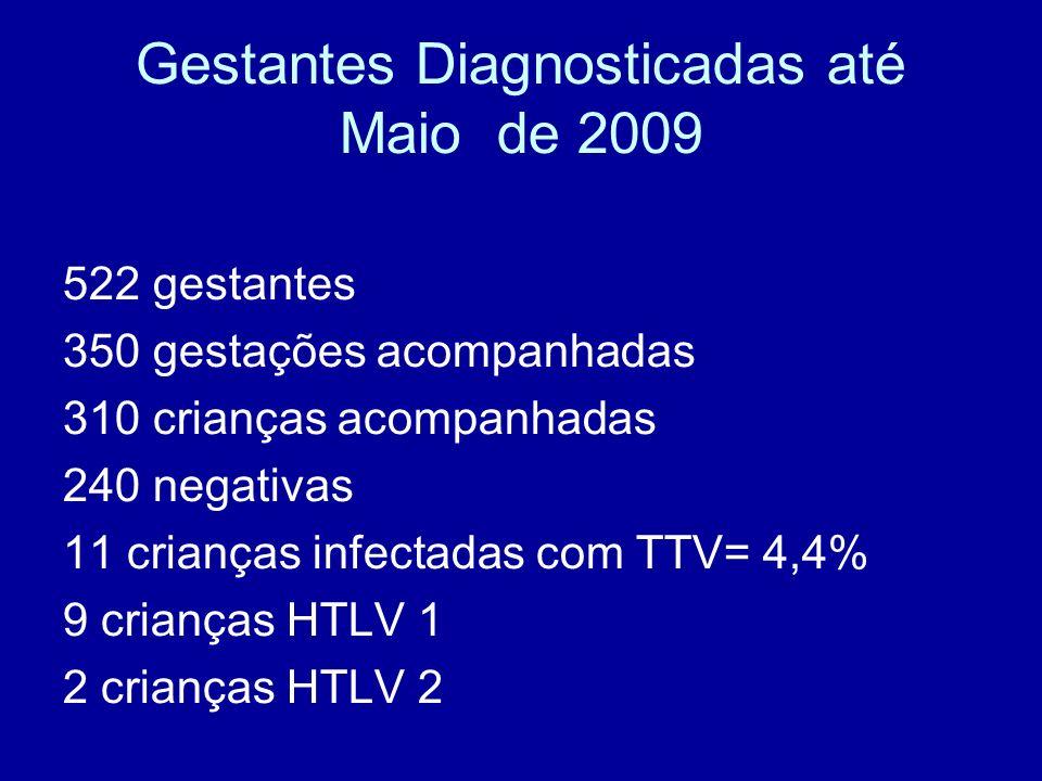 Gestantes Diagnosticadas até Maio de 2009