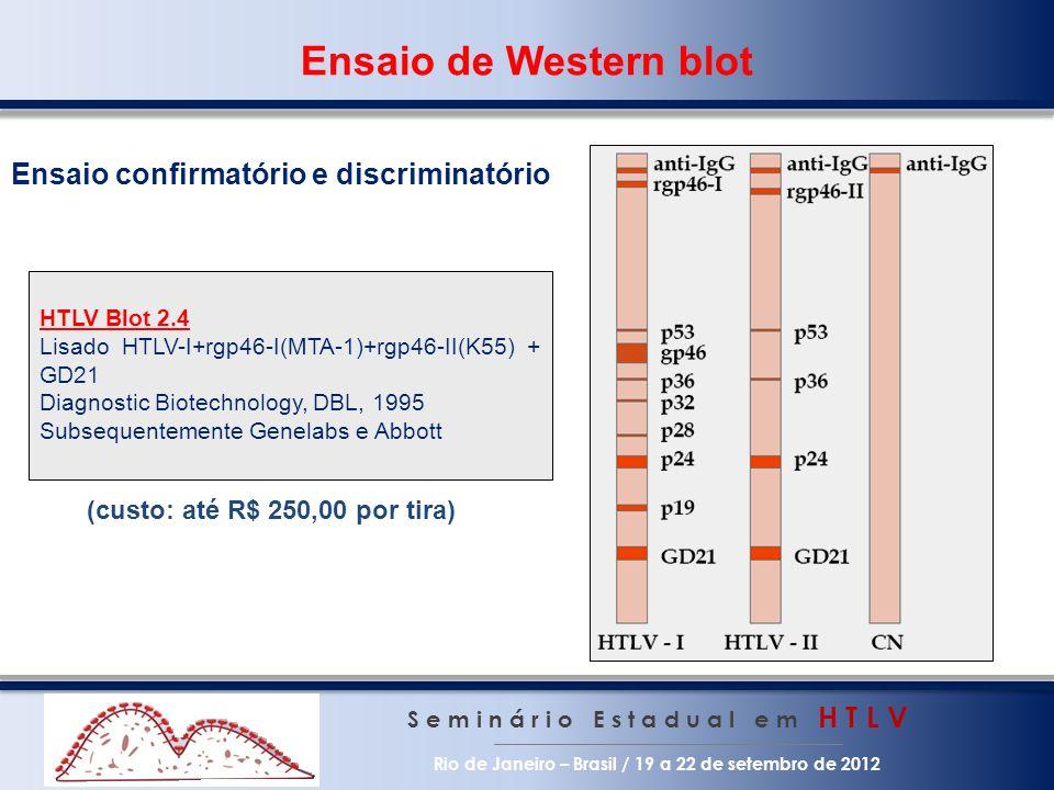 Ensaio de Western blot Ensaio confirmatório e discriminatório