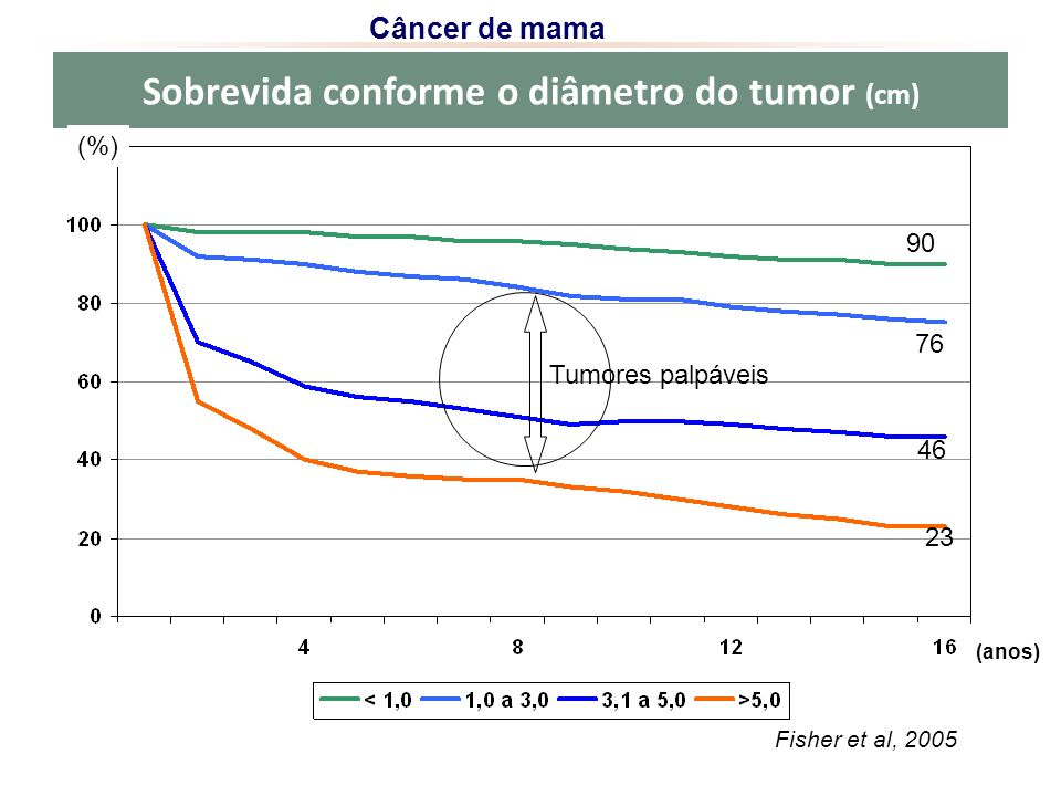Sobrevida conforme o diâmetro do tumor (cm)