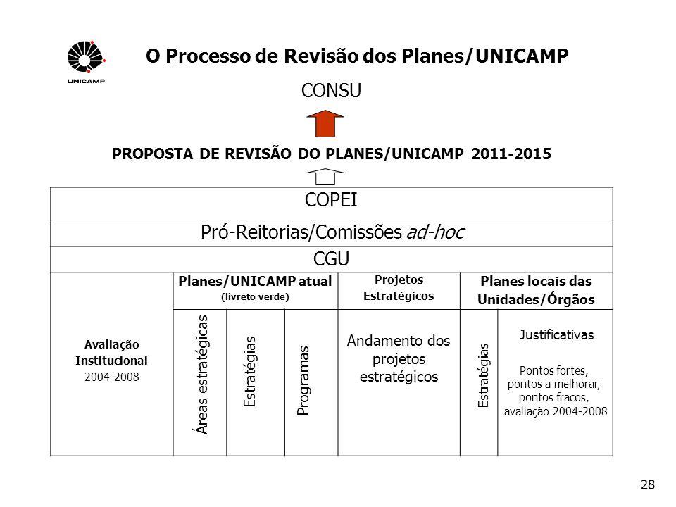 O Processo de Revisão dos Planes/UNICAMP