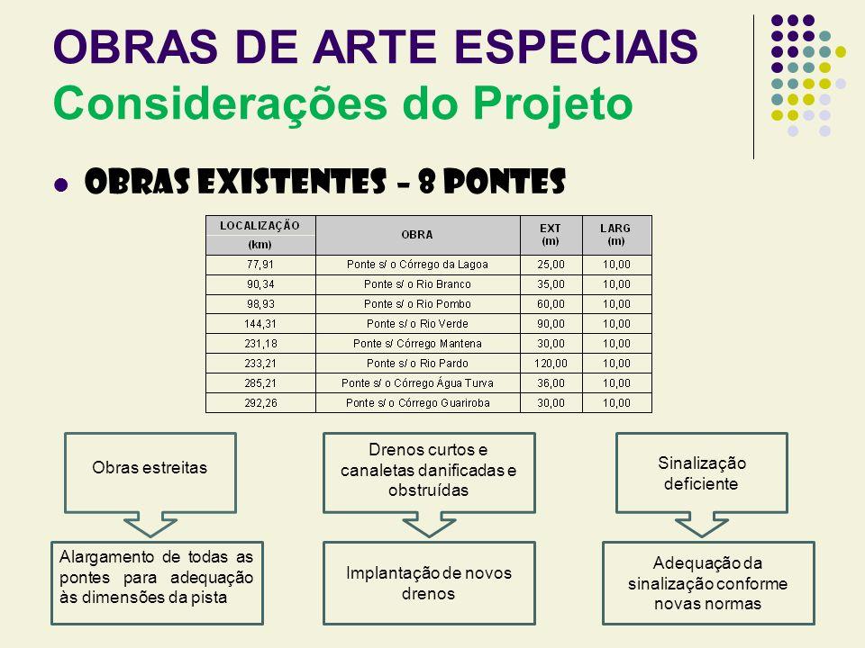 OBRAS DE ARTE ESPECIAIS Considerações do Projeto