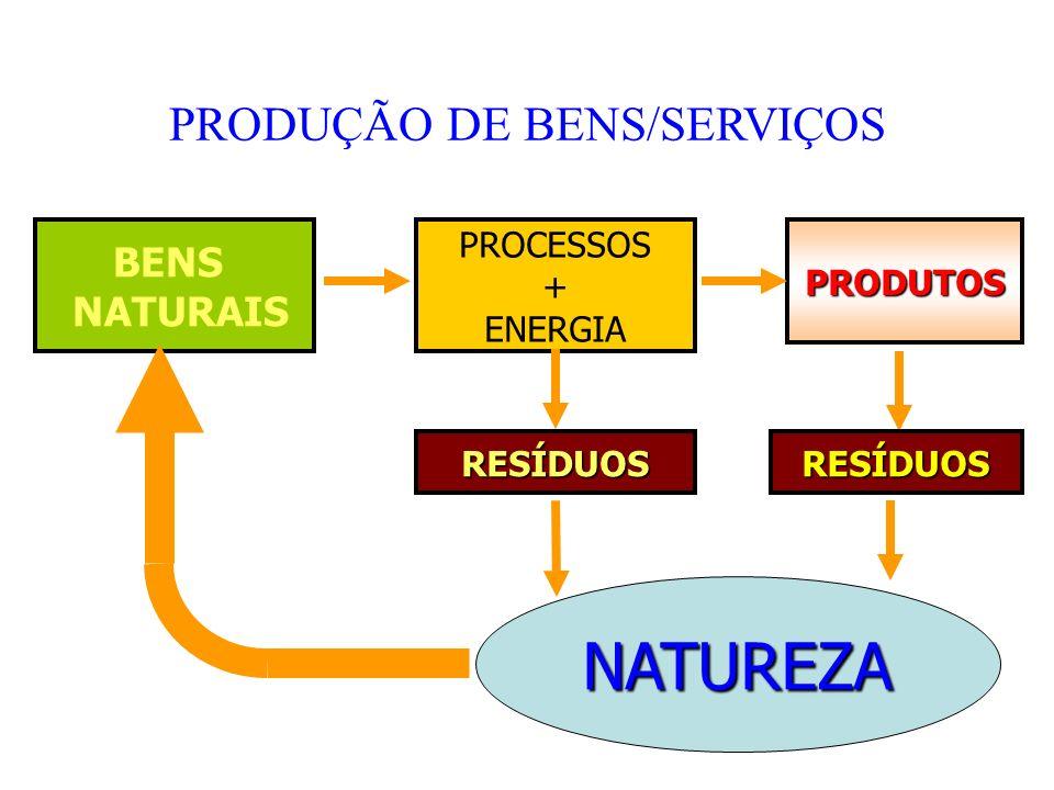 PRODUÇÃO DE BENS/SERVIÇOS