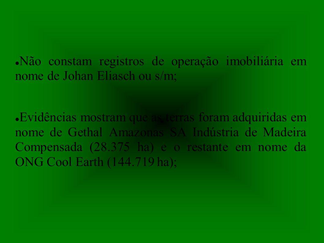 Não constam registros de operação imobiliária em nome de Johan Eliasch ou s/m;