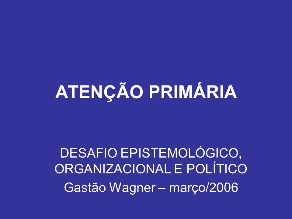 DESAFIO EPISTEMOLÓGICO, ORGANIZACIONAL E POLÍTICO