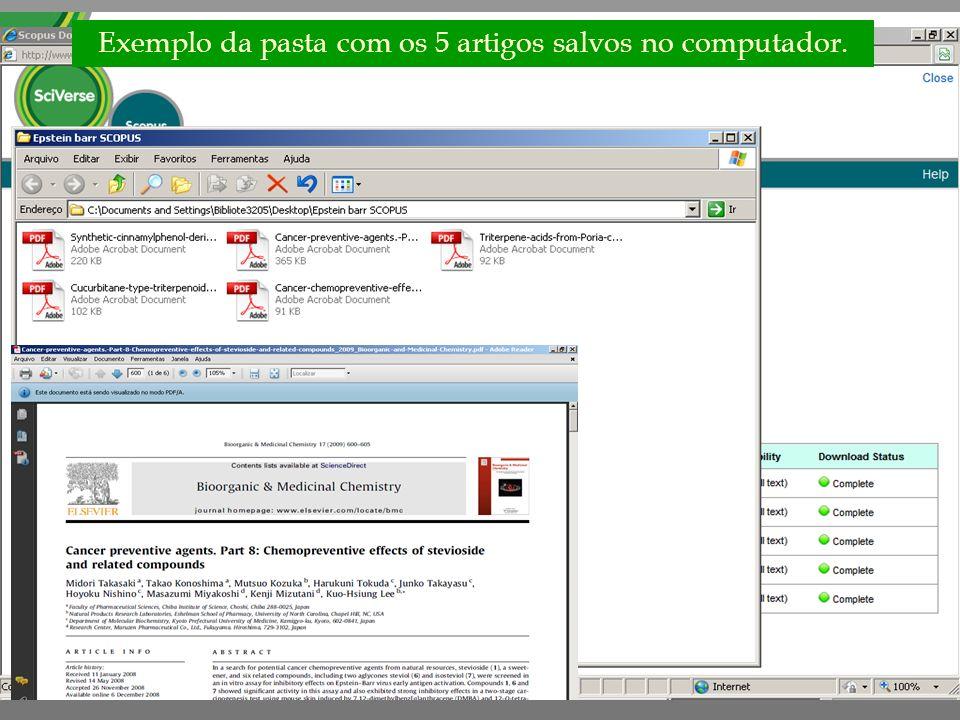 Exemplo da pasta com os 5 artigos salvos no computador.