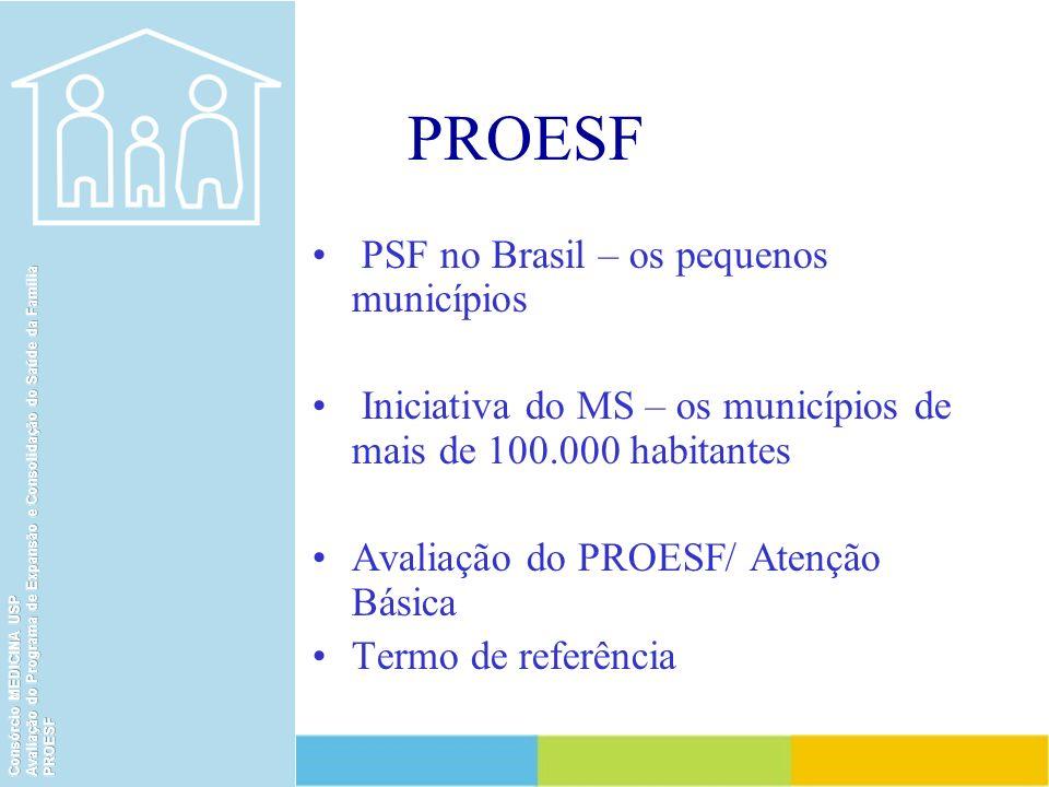 PROESF PSF no Brasil – os pequenos municípios