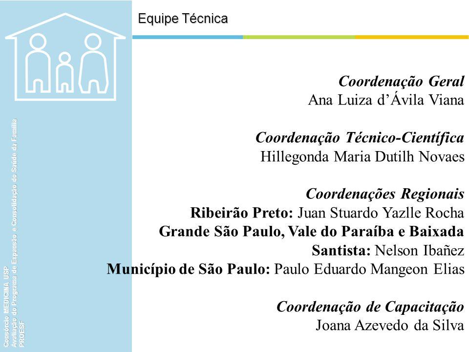 Ana Luiza d'Ávila Viana Coordenação Técnico-Científica