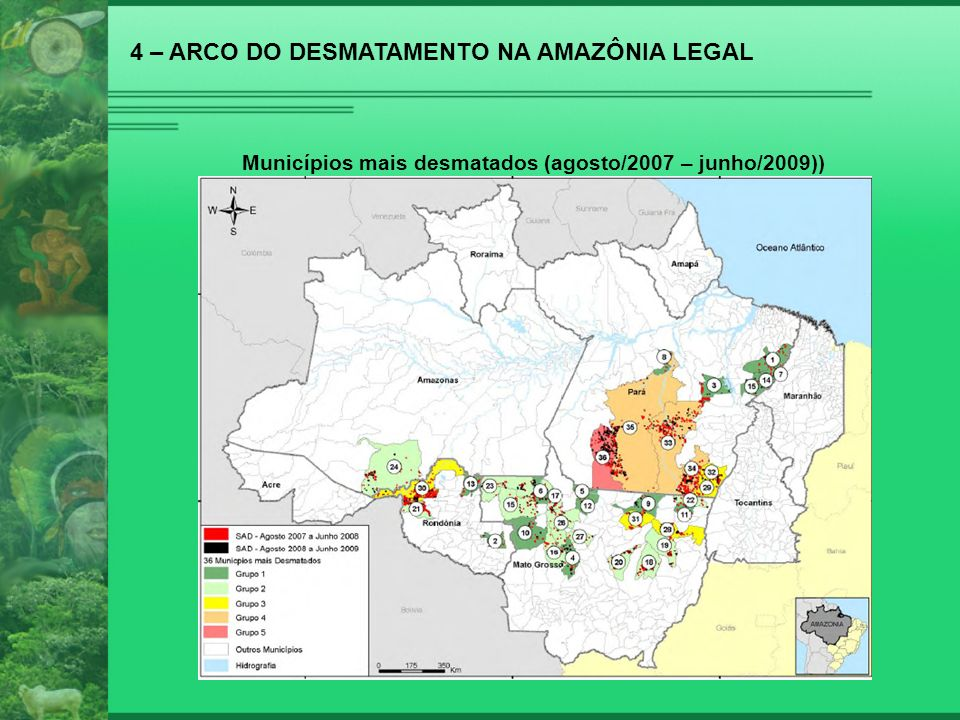 4 – ARCO DO DESMATAMENTO NA AMAZÔNIA LEGAL