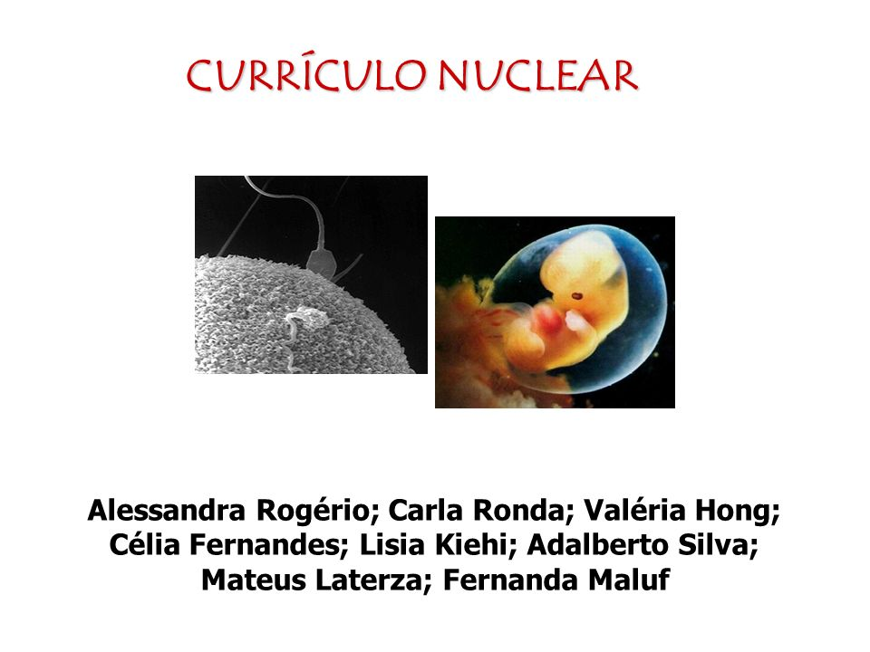 CURRÍCULO NUCLEAR Alessandra Rogério; Carla Ronda; Valéria Hong; Célia Fernandes; Lisia Kiehi; Adalberto Silva; Mateus Laterza; Fernanda Maluf.